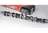 Lunati Ford 4.6L 2-Valve 3-Valve 4-Valve Engine Camshafts